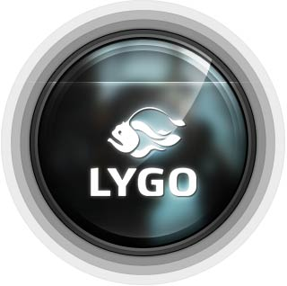 Lygo International Ltd